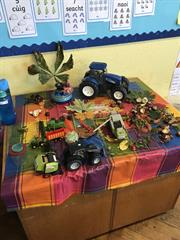 1st Class Nature Table