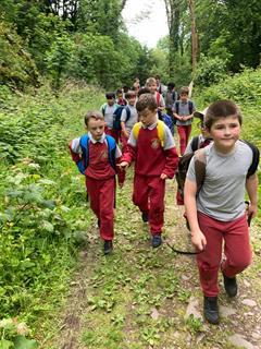 2nd Class visit to Ballyannon Woods
